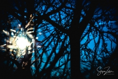 Sonnenaufgang Kordigast (12)