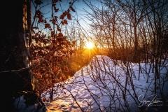 Sonnenaufgang Kordigast (8)